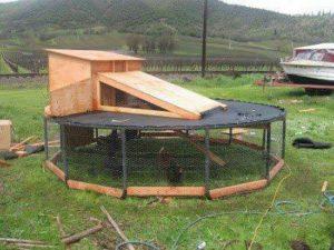 DIY-Trampoline-Chicken-Coop-1